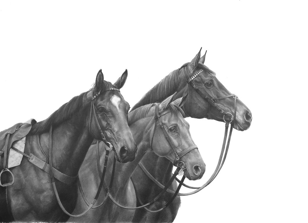 Three Racehorses<br>Note Card #HP44