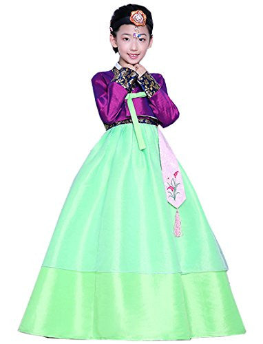 Lemail wig Korean Modern Hanboks For Girls Embroidery Printed Hanbok Purple