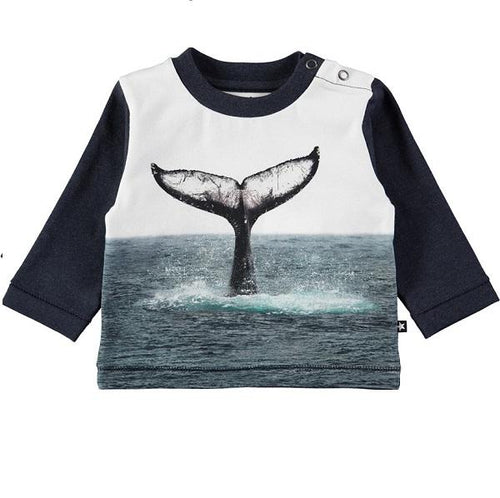 Molo Enovan T-Shirts Whale Tail-T-shirts-MOLO- babies, kids and moms fashion, decor and accessories at Modern Kids Society USA