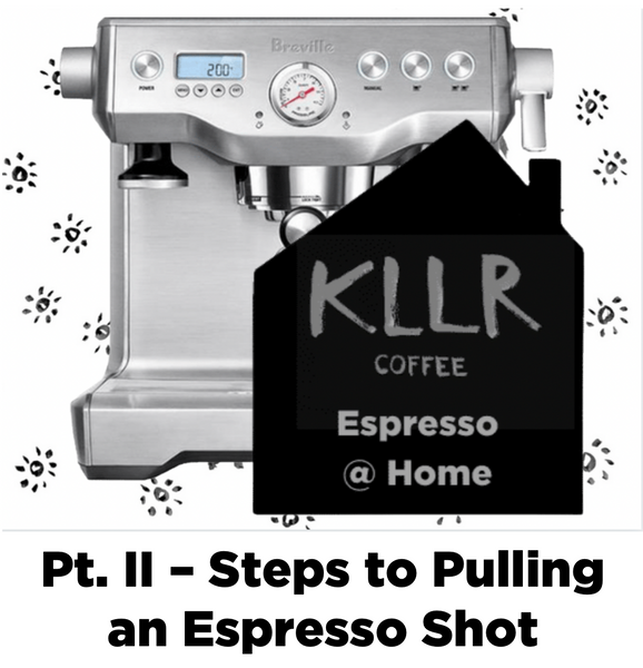 Espresso @ Home Pt. II - Steps to Pulling an Espresso Shot