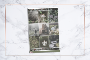 Fairytale Forest || For Erin Condren Vertical