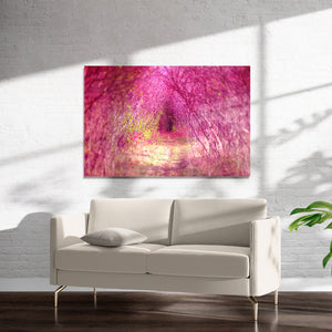 INTO THE PINK LIGHT Art on Acrylic By Bomobob