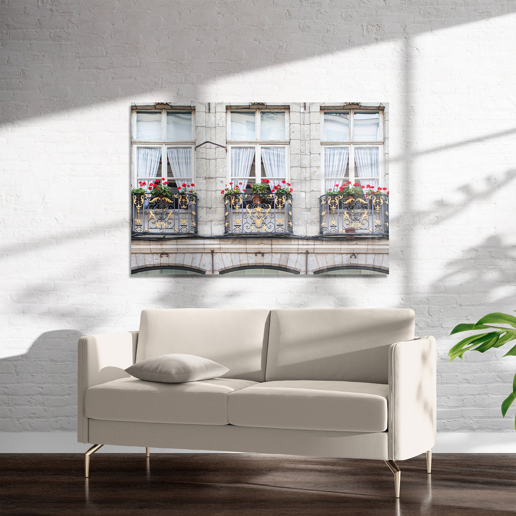 GERANIUMS AND IRONWORK Art on Acrylic By David Phillips