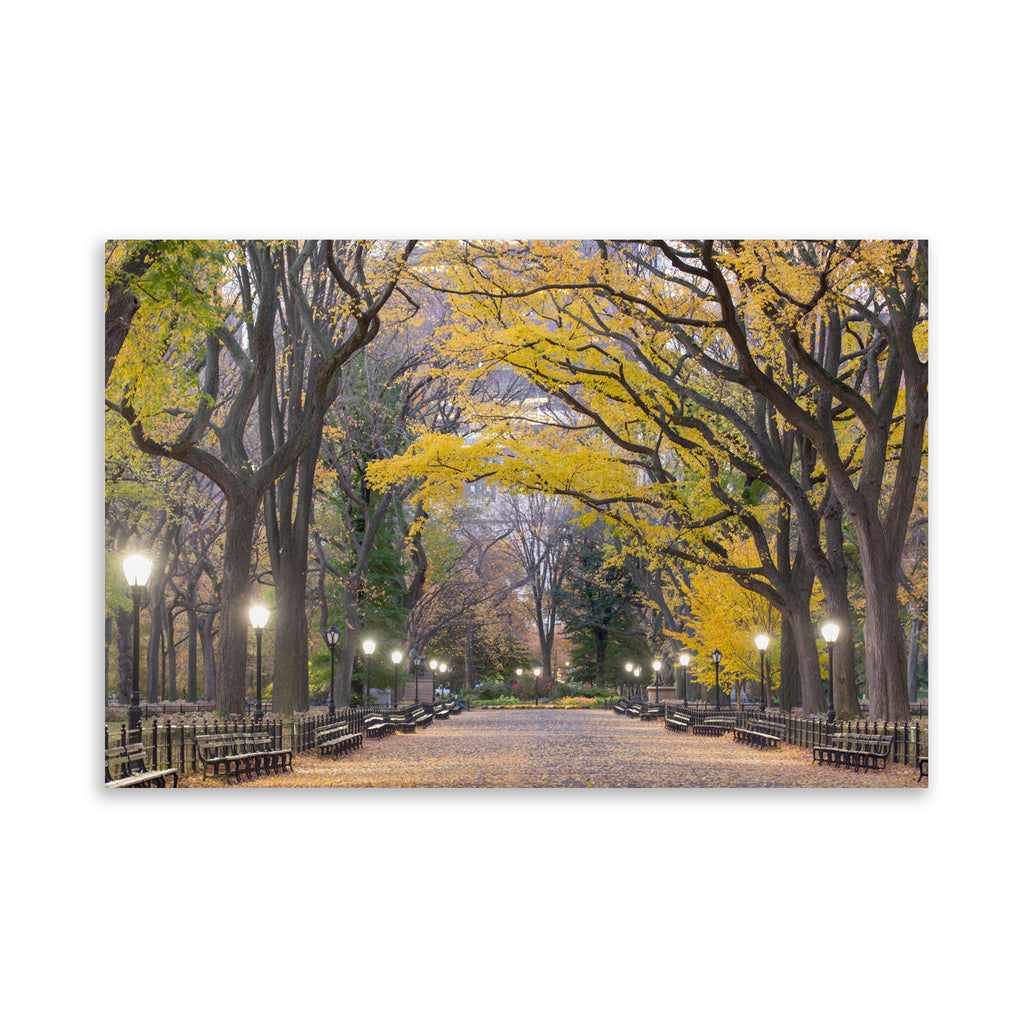 POET'S WALK CENTRAL PARK Art on Acrylic By David Phillips