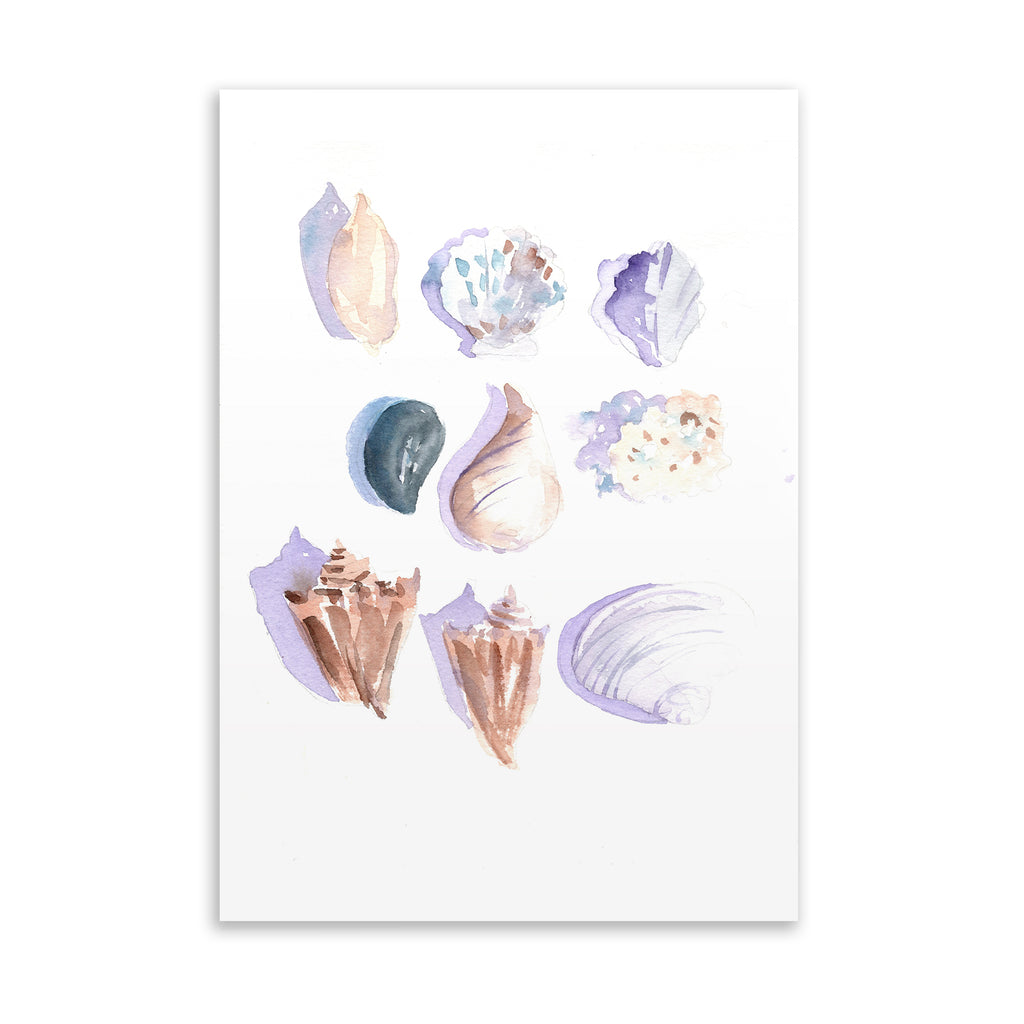 SEA SHELLS Art on Acrylic By Jayne Conte
