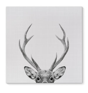 DEER Canvas Art By Vivid Atelier
