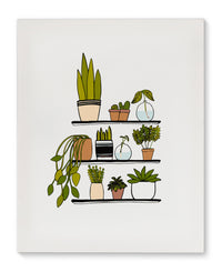 SHELF PLANTS  Canvas Art By Michelle Parascandolo