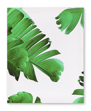 PALM ENVY Canvas Art By Vivid Atelier