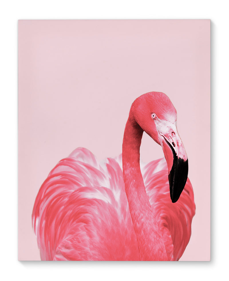 PINK FLAMINGO Canvas Art By Vivid Atelier