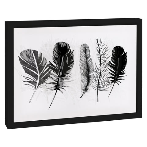 FEATHERS Premium Framed Gallery Wrap By Honeytree Prints