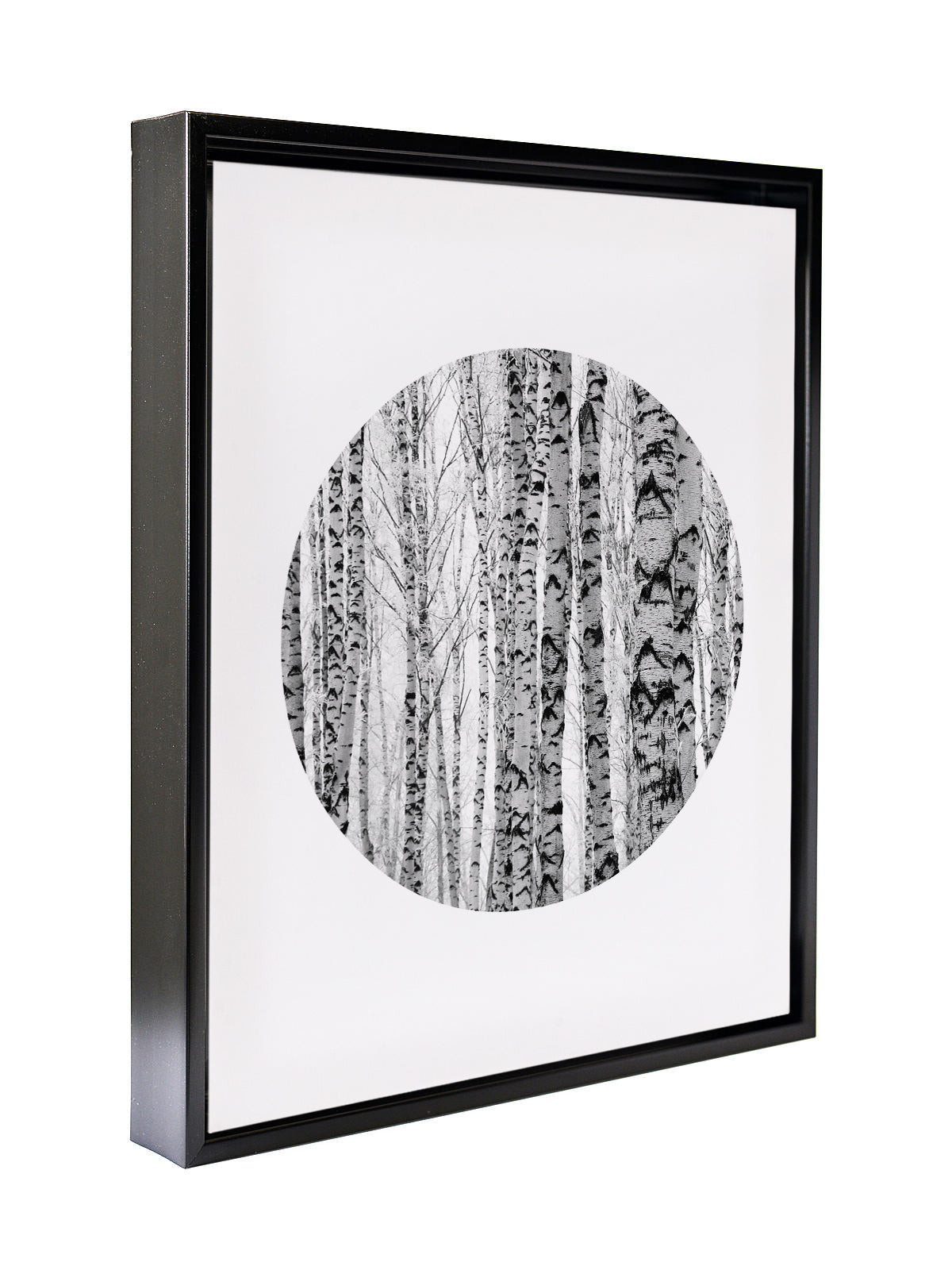 TREE CIRCLE Premium Framed Gallery Wrap By Honeytree Prints