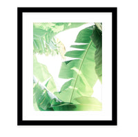 COOL TROPICS Framed Giclee Print With Mat By Ann Hudec