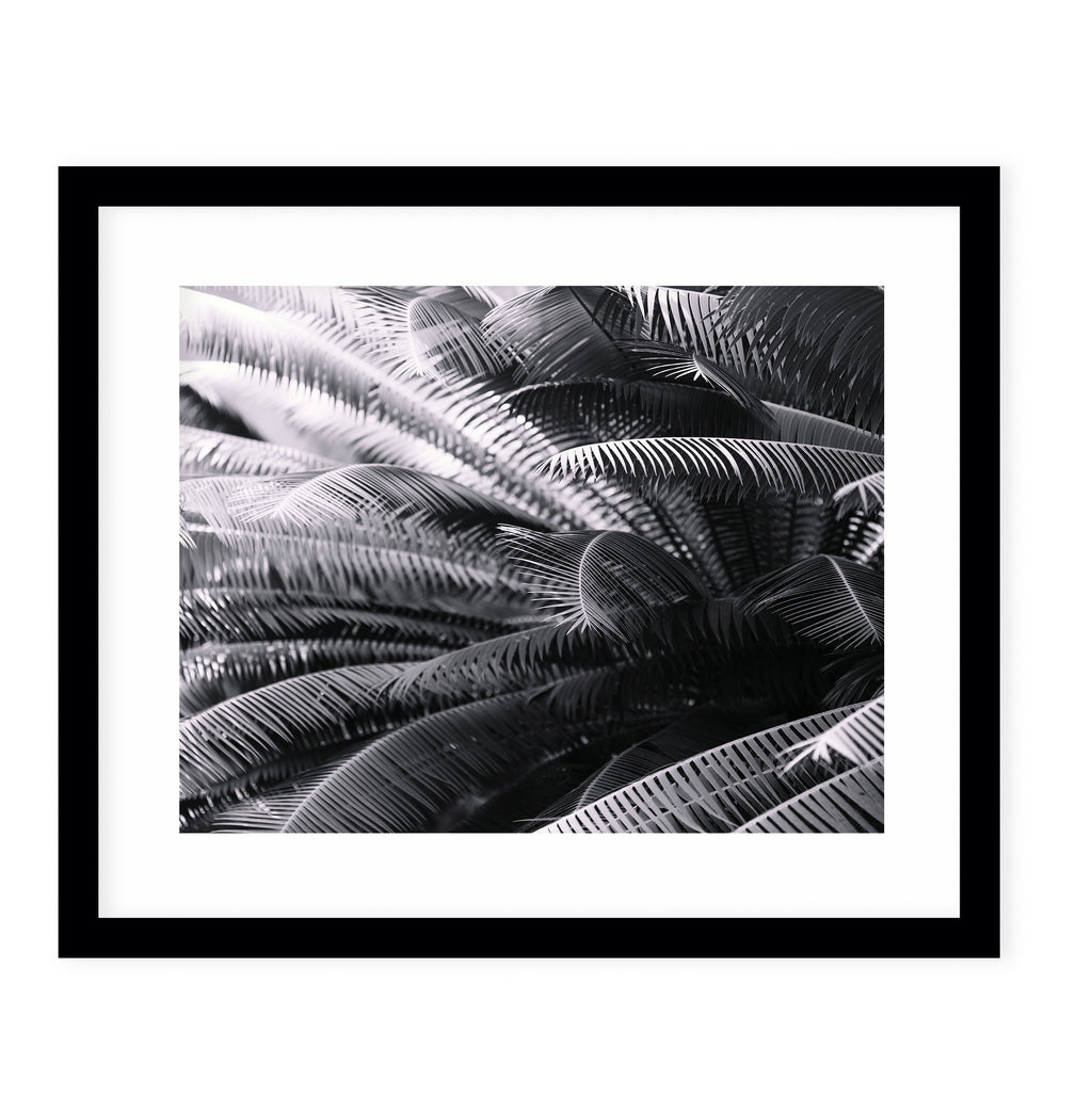 SHADE SEEKER Framed Giclee Print With Mat By Ann Hudec