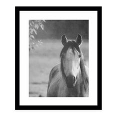 NEW LIFE Framed Giclee Print With Mat By Robin Delean