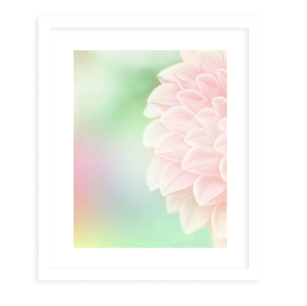 BLOOM2 Framed Giclee Print With Mat By Robin Delean