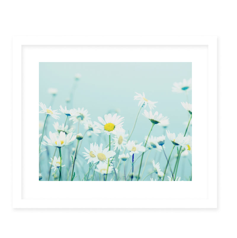 DANCING DAISIES Framed Giclee Print With Mat By Robin Delean