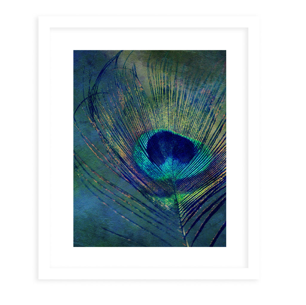 FEATHER Framed Giclee Print With Mat By Robin Delean