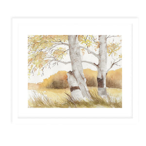 AUTUMN BIRCH TREES Framed Giclee Print With Mat By Jayne Conte