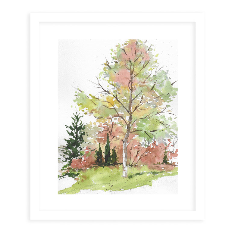 AUTUMN TREE Framed Giclee Print With Mat By Jayne Conte