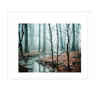 MISTY WOODS Framed Print With Mat By Olivia St.Claire