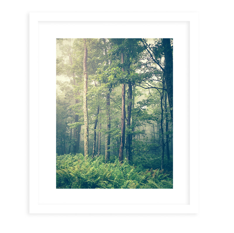 DREAM FOG Framed Print With Mat By Olivia St.Claire