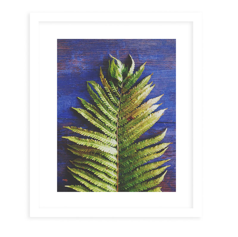 FERN Framed Print With Mat By Olivia St.Claire