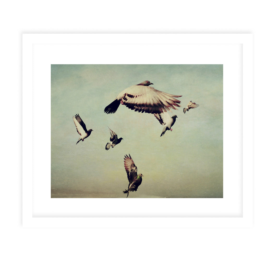 FLIGHT OF THE PIGEONS Framed Print With Mat By Olivia St.Claire