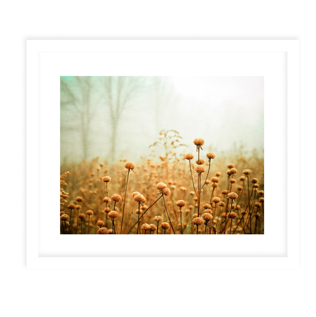 FALL MIST Framed Print With Mat By Olivia St.Claire