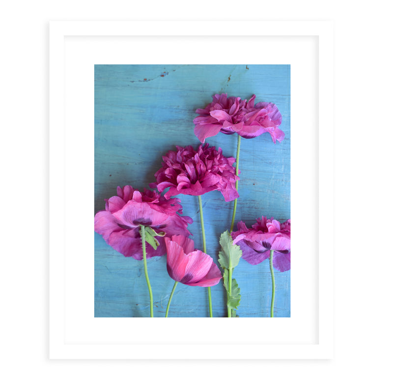 POPPIES Framed Print With Mat By Olivia St.Claire