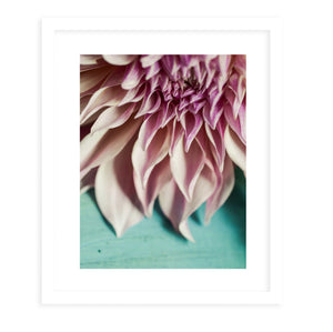 STILL LIFE OHIO NATURE FLOWERS Framed Print With Mat By Olivia St.Claire