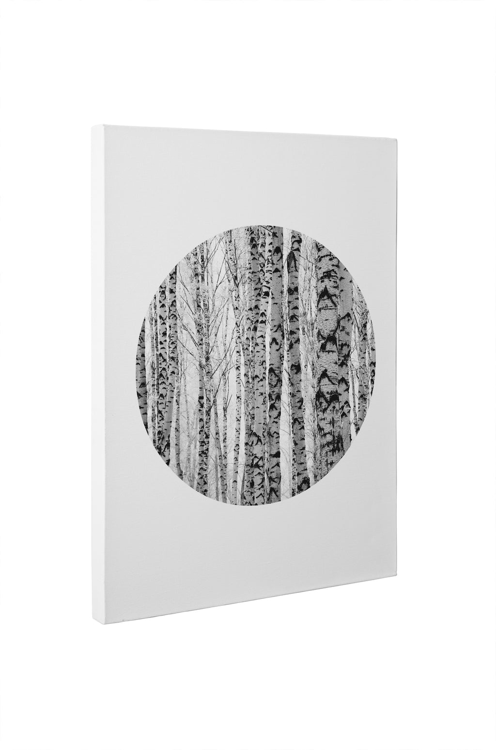 TREE CIRCLE Canvas Art By Honeytree Prints