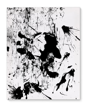 PAINT SPLASH TWO Canvas Art By Honeytree Prints