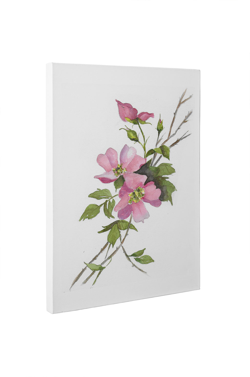 PINK ROSES Canvas Art By Jayne Conte