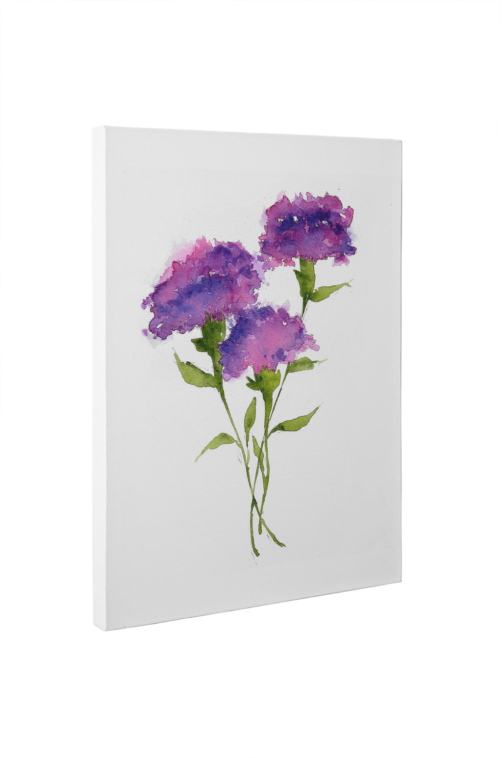 PURPLE CARNATIONS Canvas Art By Jayne Conte