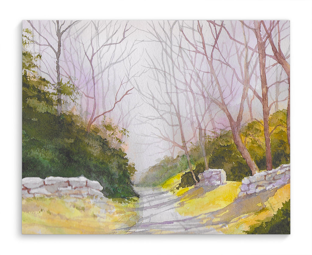 ROAD WITH STONE WALLS COLOR Canvas Art By Jayne Conte