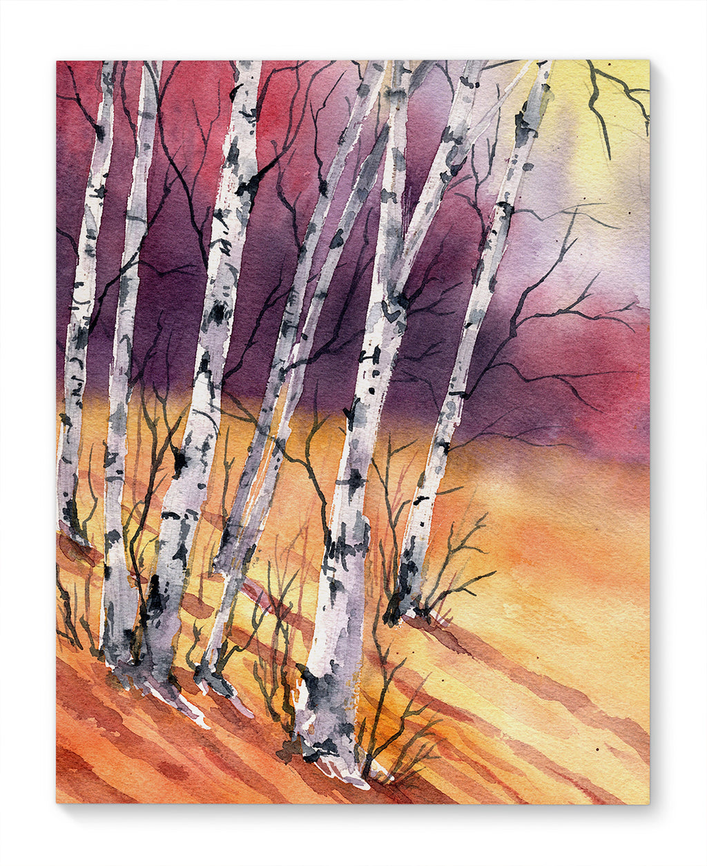 BIRCH TREES ON A HILL Canvas Art By Jayne Conte