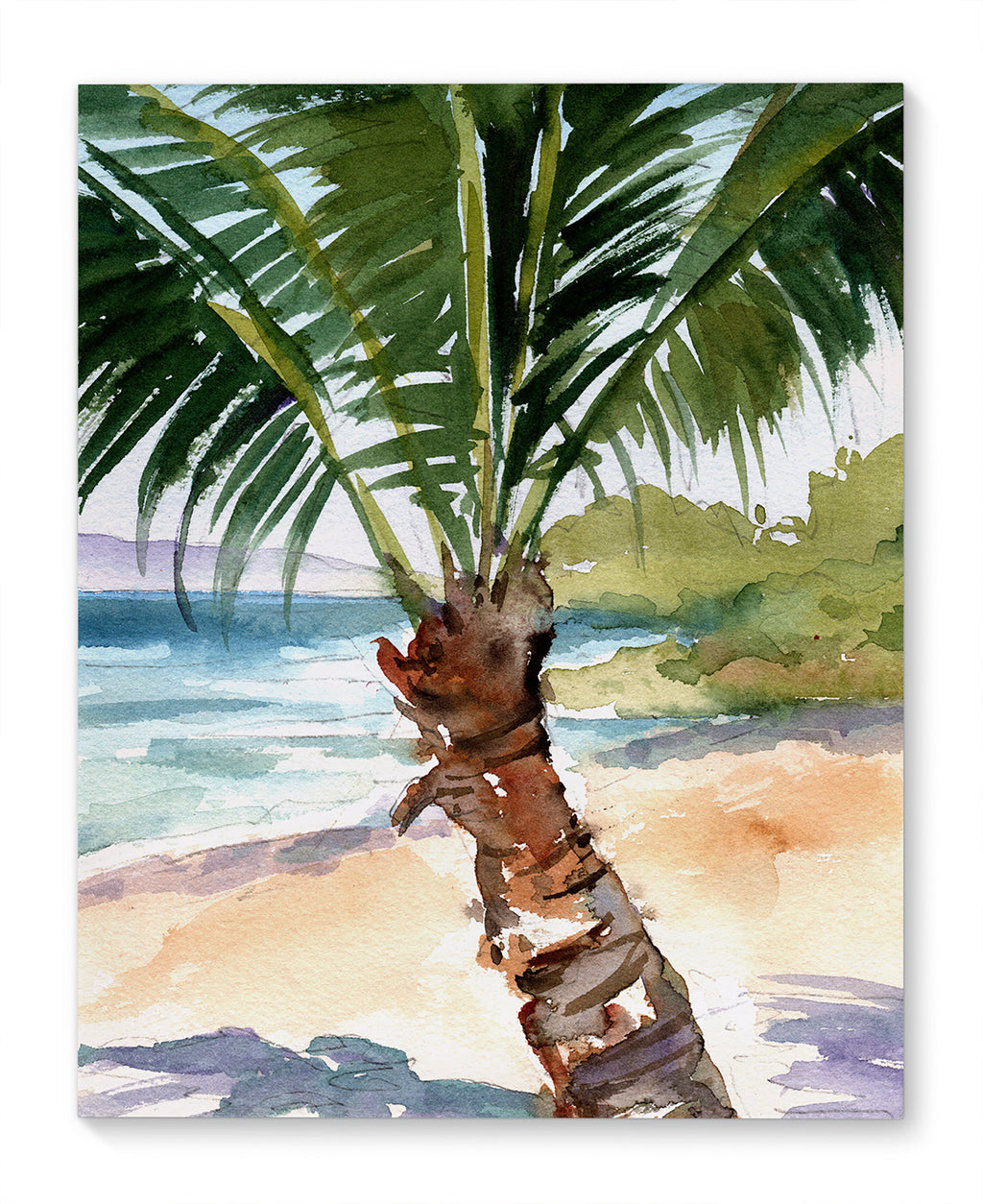 SUMMER PALM Canvas Art By Jayne Conte