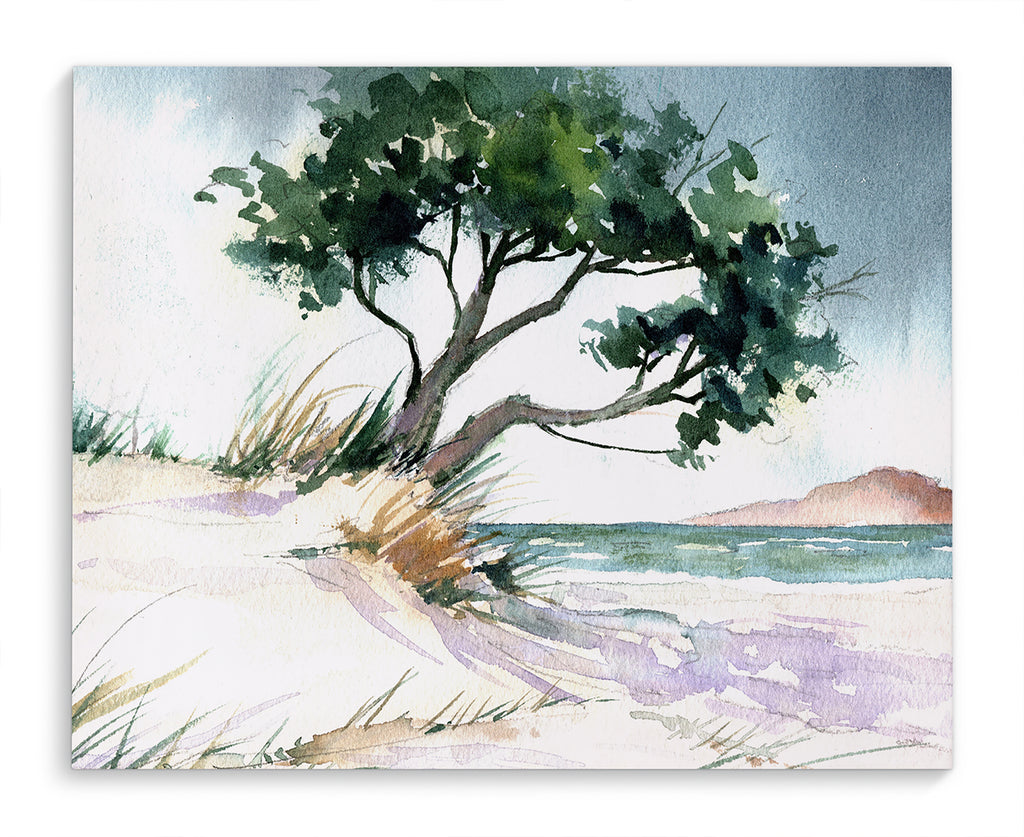 BEACH TREE Canvas Art By Jayne Conte