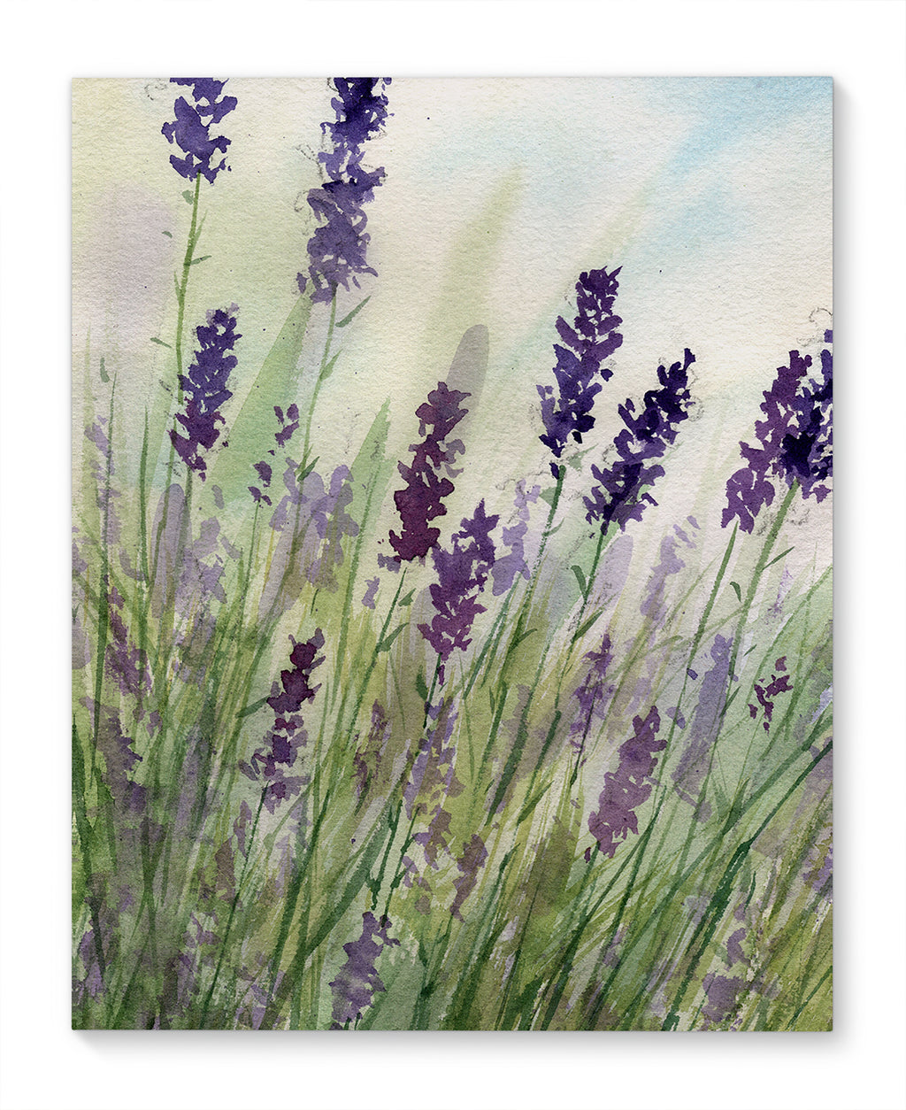 LAVENDAR Canvas Art By Jayne Conte
