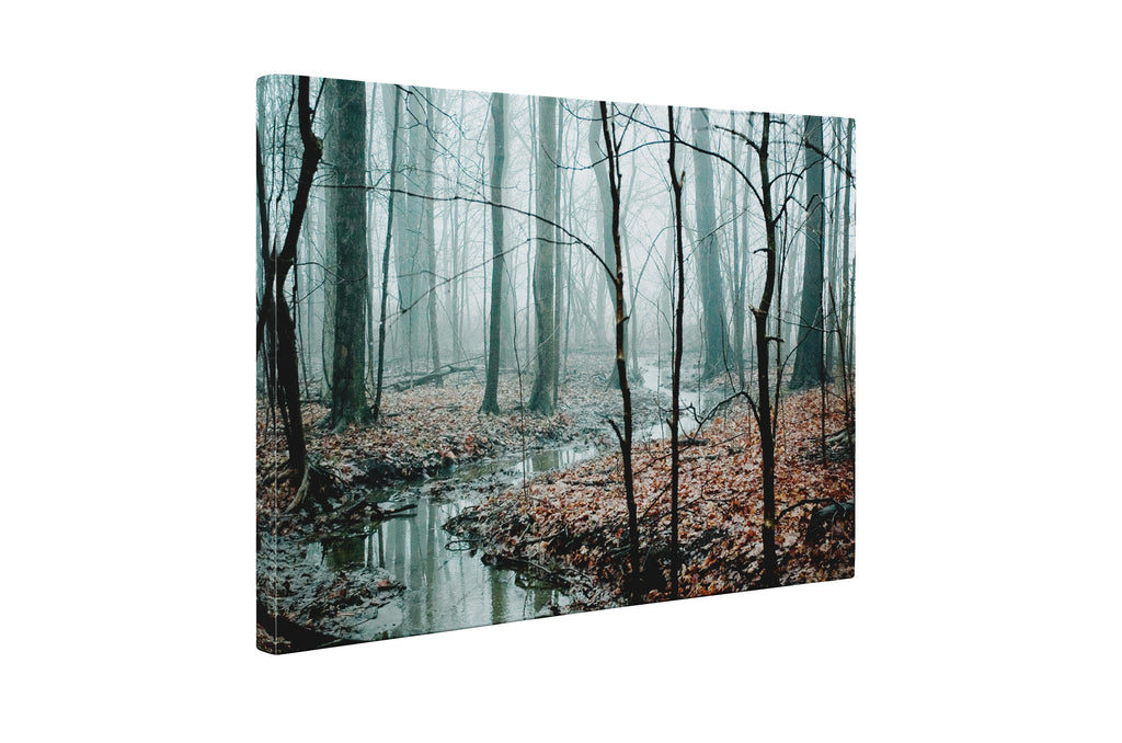 MISTY WOODS Canvas Art By Olivia St Claire