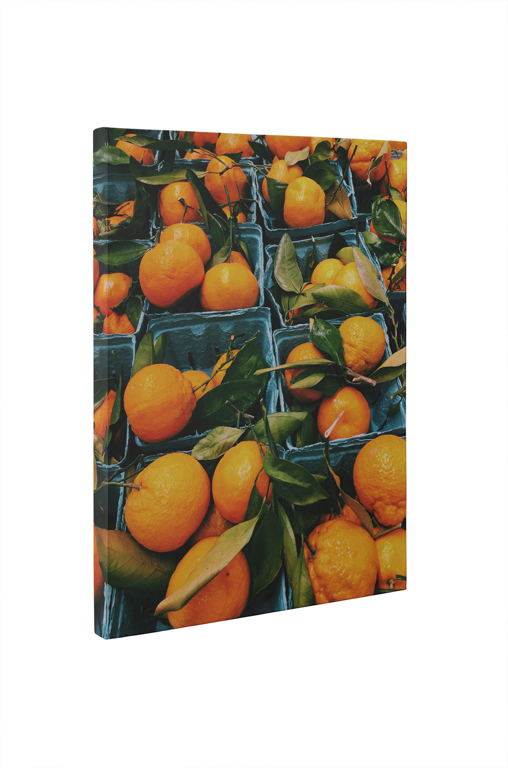 ORANGE PICK Canvas Ar By Olivia St. Claire