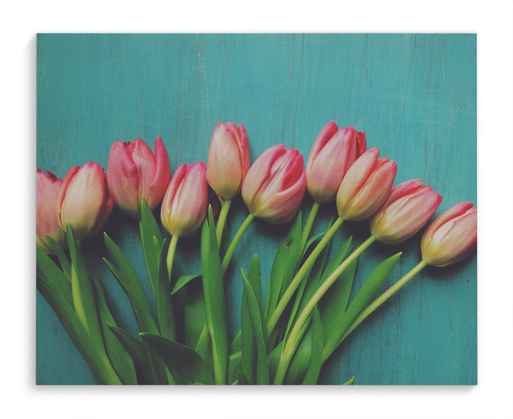 PINK TULIPS Canvas Ar By Olivia St. Claire