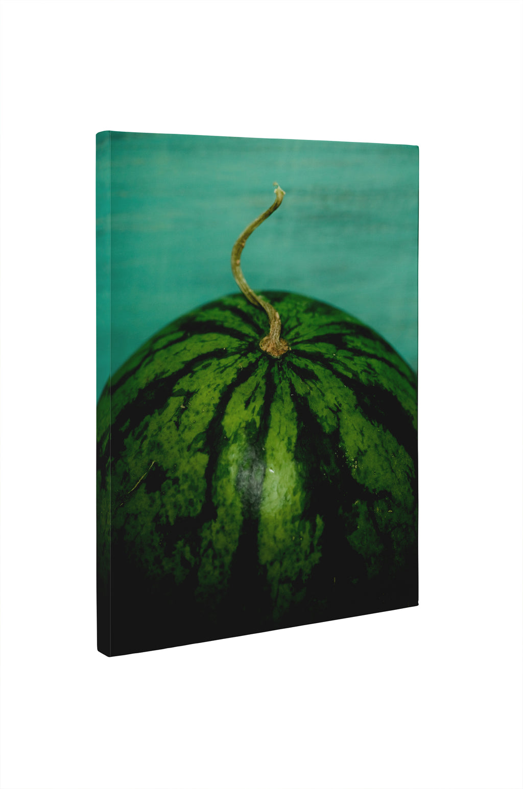 WATERMELON Canvas Ar By Olivia St. Claire