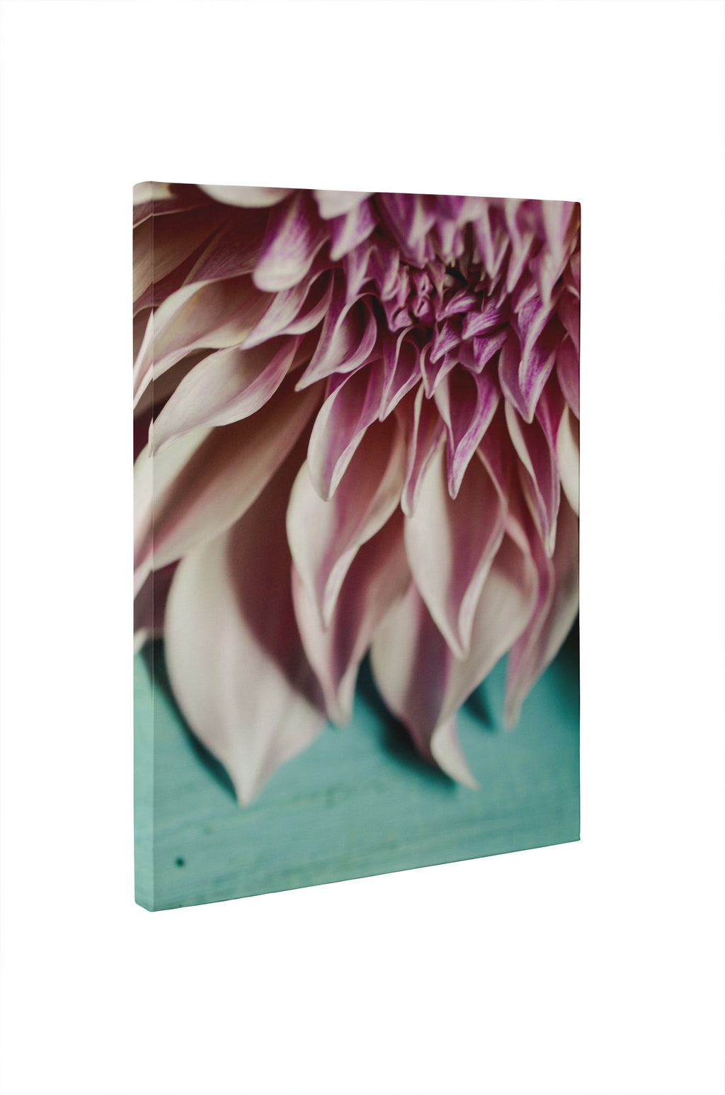 STILL LIFE OHIO NATURE FLOWERS Canvas Ar By Olivia St. Claire