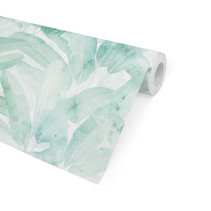 MUSA AQUA GREEN Peel and Stick Wallpaper By Marina Gutierrez