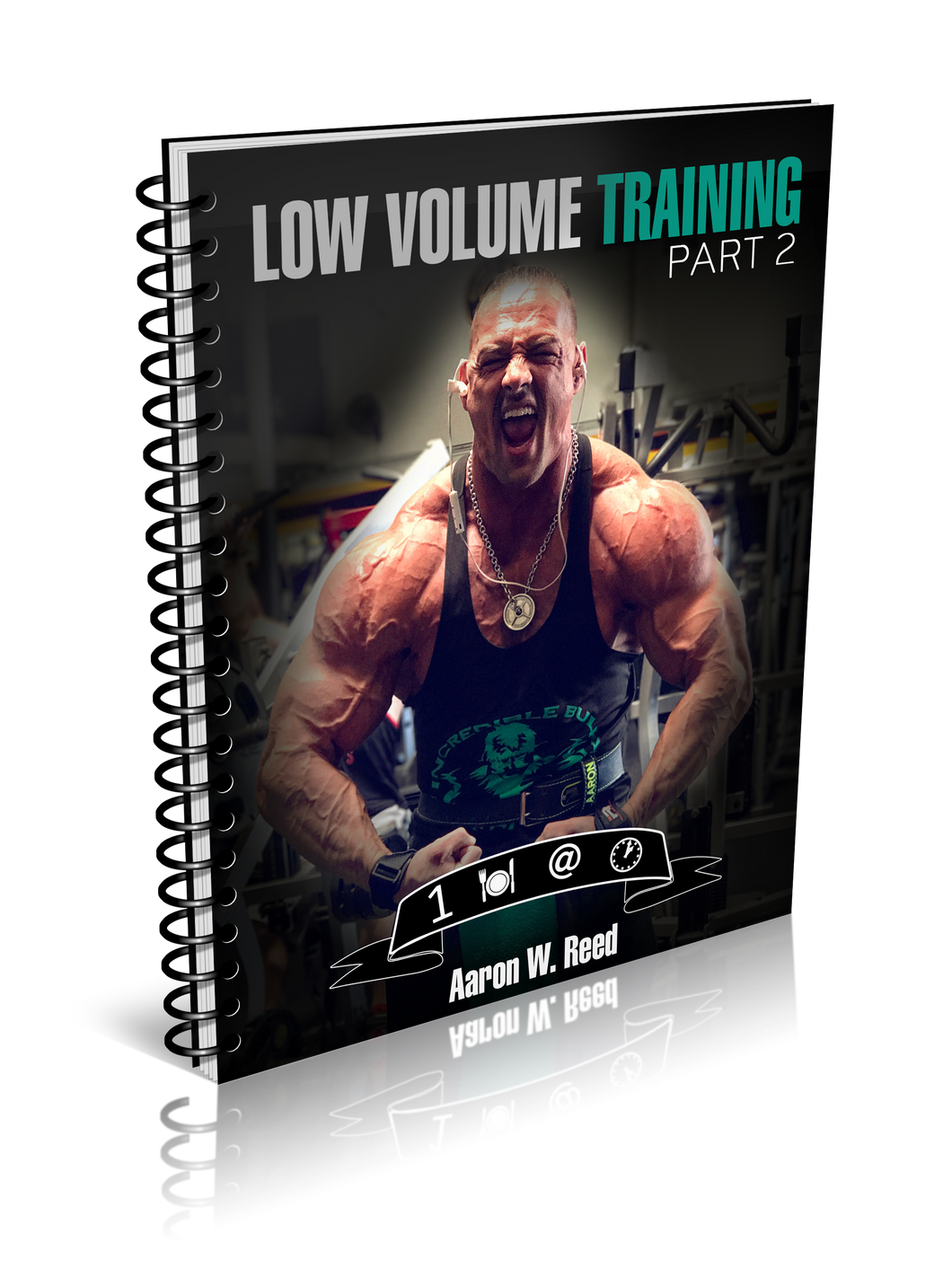 Aaron Reed's Low Volume Workout 2