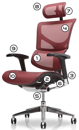 X-Chair Specification Diagram