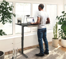 BDI Stance Lift Desk