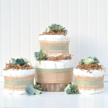 Succulent Diaper Cake - Two Tier