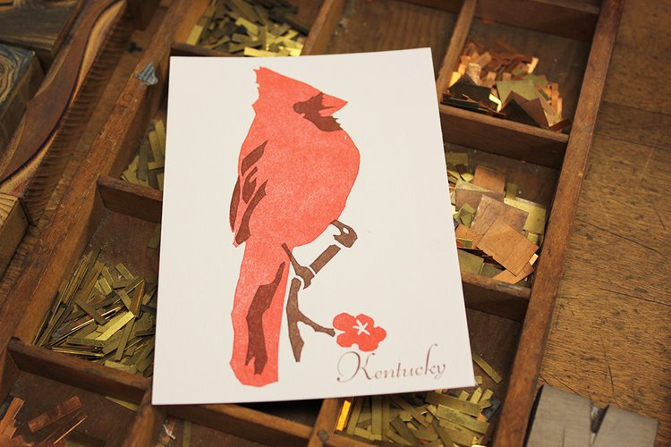 Kentucky State Bird Postcard Cardinal